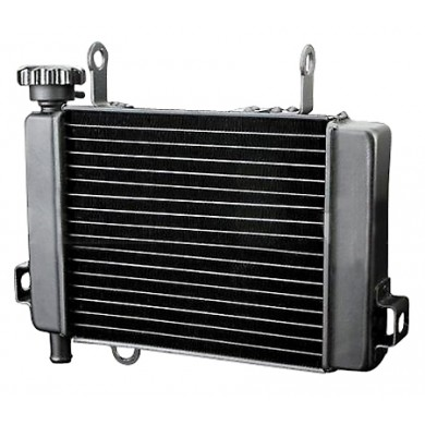 Water Radiator Honda CBR 125 '04->