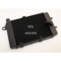 Water Radiator Aprilia Tuono '02-'05 Left